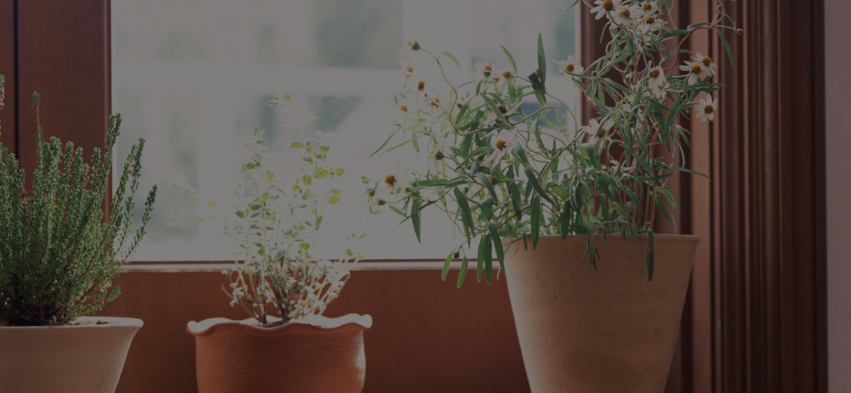 5 Feng Shui Rules That Should Never Be Broken