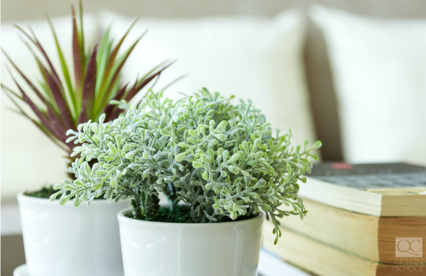 Plants to use for interior decorating