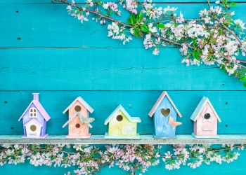 colorful spring home staging course