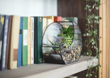 feng shui for your mental health