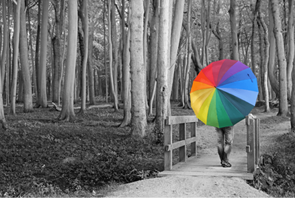 black and white image of forest, with man walking over bridge carrying rainbow umbrella