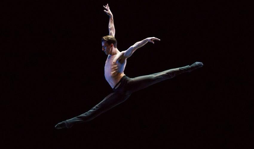 bradley shlagheck ballet dancer turned professional organizer