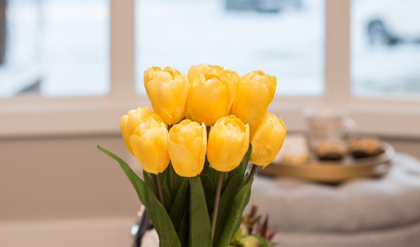 yellow tulips for home staging by Eva Zatyko a Feng Shui Course and Home Staging Course graduate