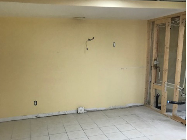 allanford-basement-before