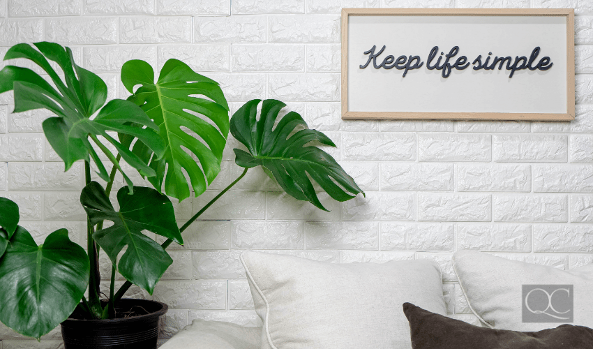 plant and keep it simple sign on wall