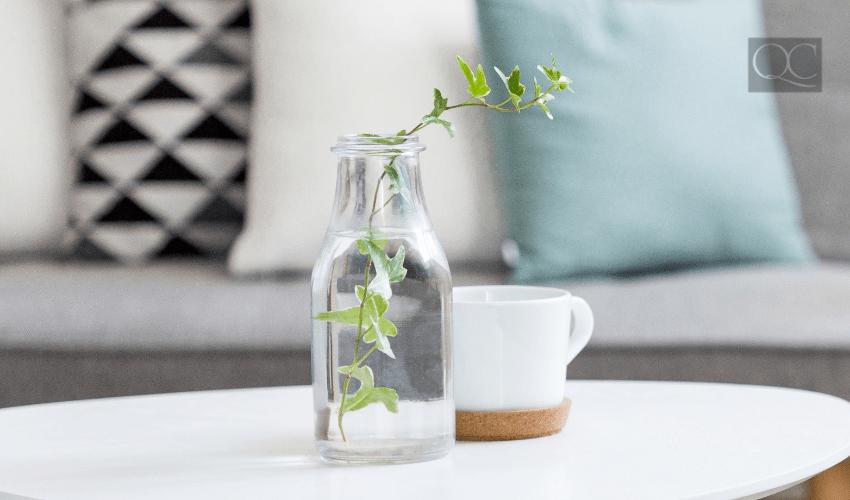 greenery in glass on coffee table