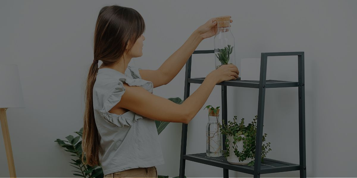 Turning Your Feng Shui Certification into a Successful Design Career