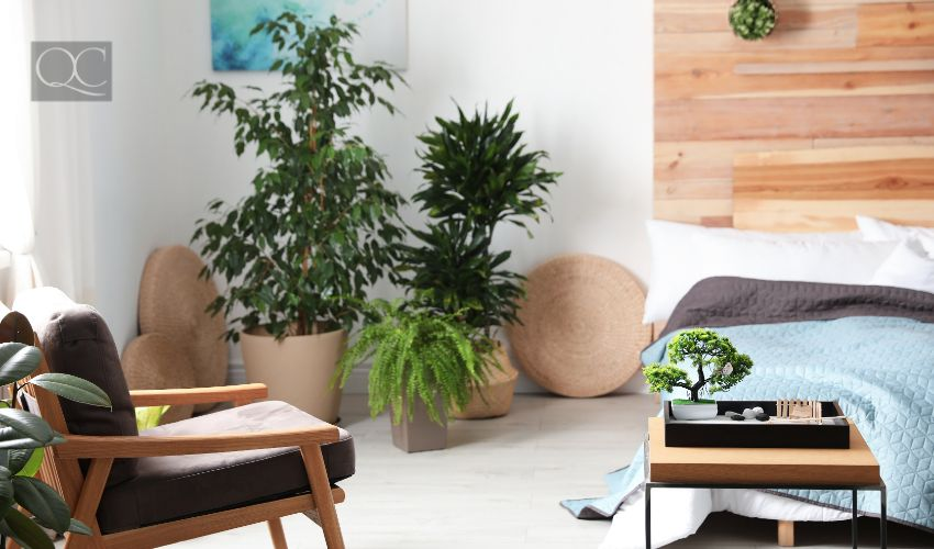 Feng Shui certification, living room with Feng Shui setup and interior