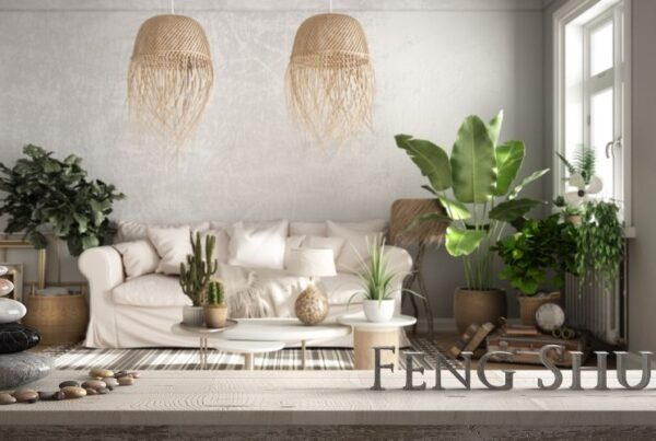 How to become a Feng Shui consultant article Feature Image