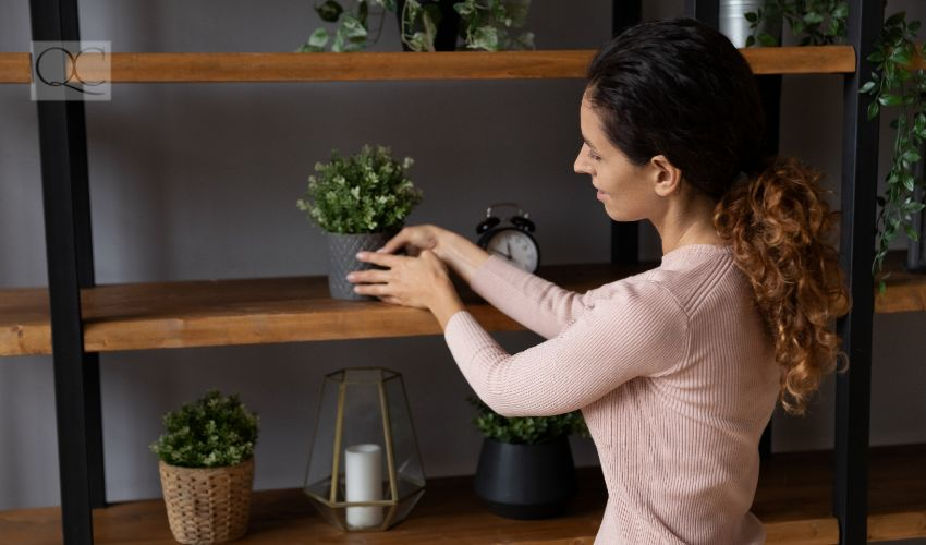 How to become an interior decorator, woman arranging potted plant on wooden shelf